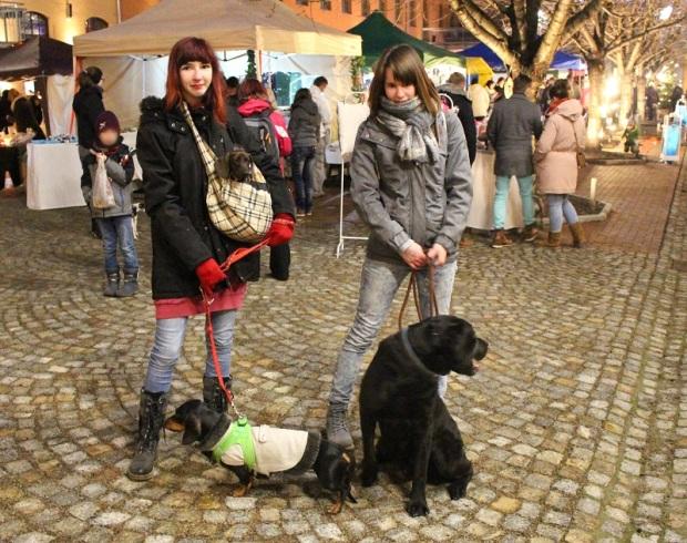 1_Chemnitzer_Hundeweihnachtsmarkt_dackel_labrador